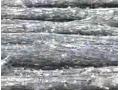 黑木耳的种植技术 (57播放)