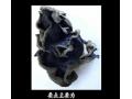 黑木耳栽培技术 (22播放)