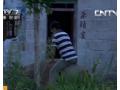2013年8月20日《致富经》 硕士被逼回家养猪 (177播放)