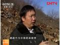 李庆增生态放养鸡的故事 (92播放)