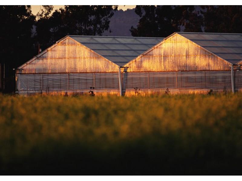 农业耕种图片