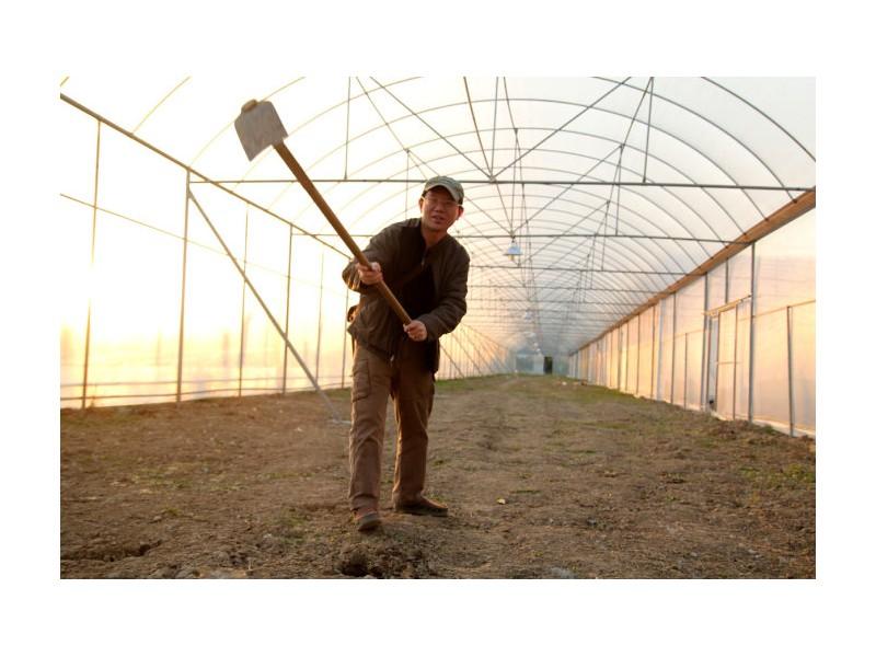 新农人图片