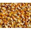四川益乘丰达饲料厂采购玉米小麦高粱木薯淀粉碎米