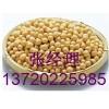 红福星养殖合作社大量收购小麦、玉米、高粱、油糠、麸皮等