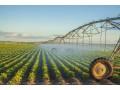 农业的未来已经到来 未来农业怎么玩 未来农业大风口