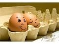 疯了,鸡蛋价格涨了3毛每斤!为什么蛋价连续大涨?后市风险大吗?