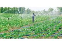 2018中国第七届(山东)国际设施农业及节水灌溉技术展览会