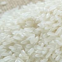 成都大量收购大米玉米高粱糯米碎米小麦