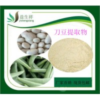 刀豆提取物 刀豆粉30:1比例 天然刀豆提取 厂家现货供应