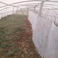 工厂定做蚂蚱养殖网棚抗老化加厚蚂蚱网质量好价格优惠