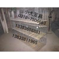 供鸡笼 鸽笼 鸽子笼 兔子笼 鹌鹑笼 狐狸笼 运输笼 宠物笼