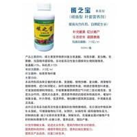 叶面肥微生物菌剂