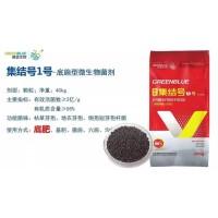 土壤调理剂微生物菌剂